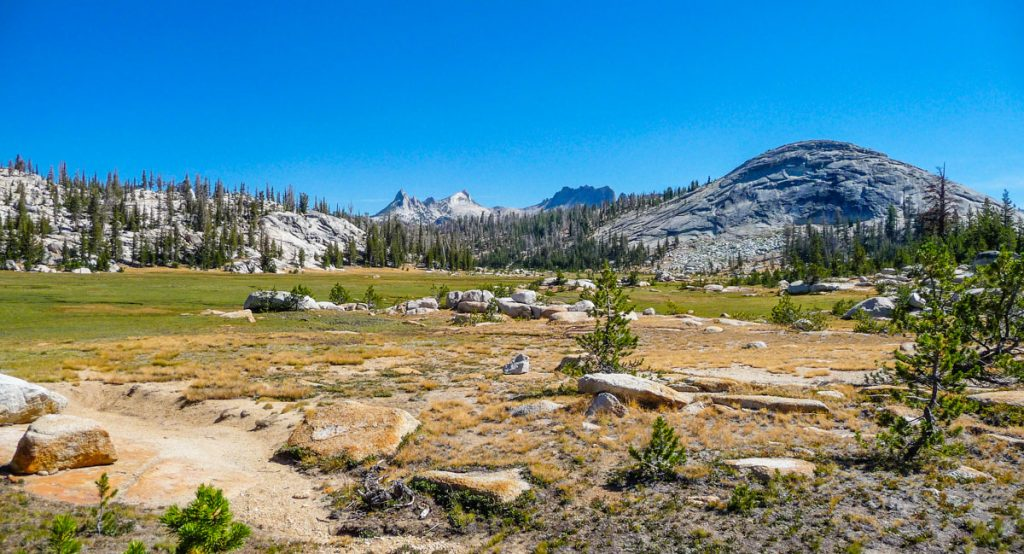 Long Meadow, Yosemite National Park