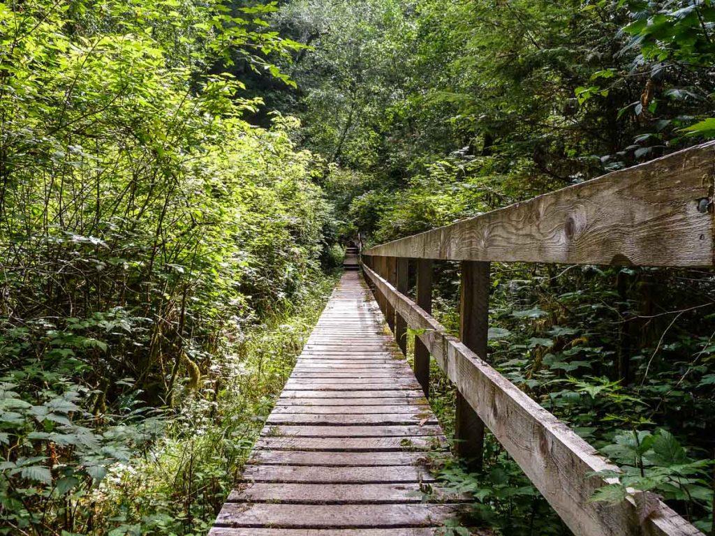 Wooden boardwalks, West Coat Trail