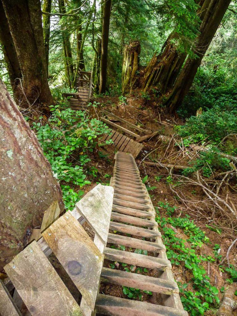Ladders, West Coast Trail