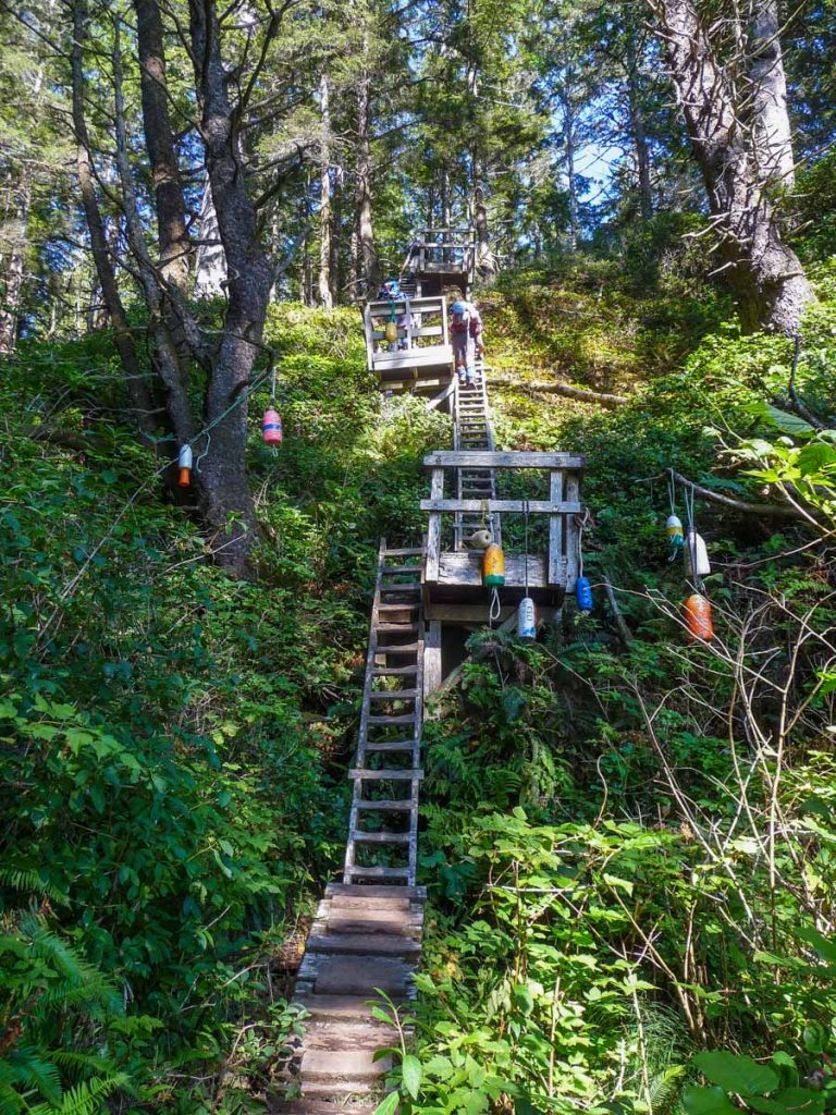 Ladders before Tsusiat Falls, West Coast Trail