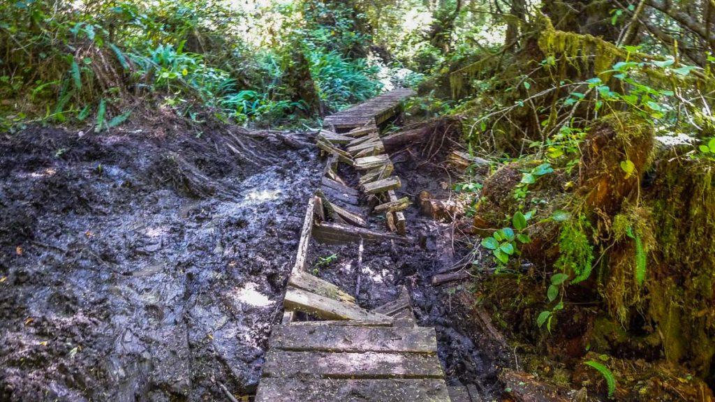 Boardwalk in pretty bad shape, West Coast Trail