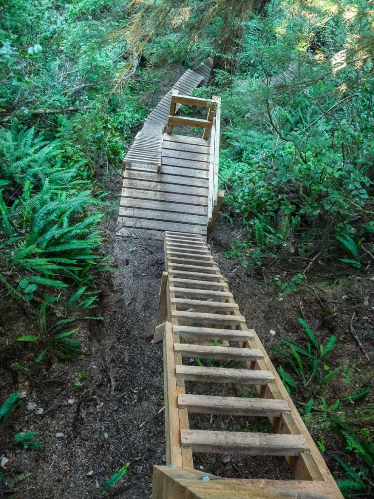 Steep ladders to the beach, West Coast Trail