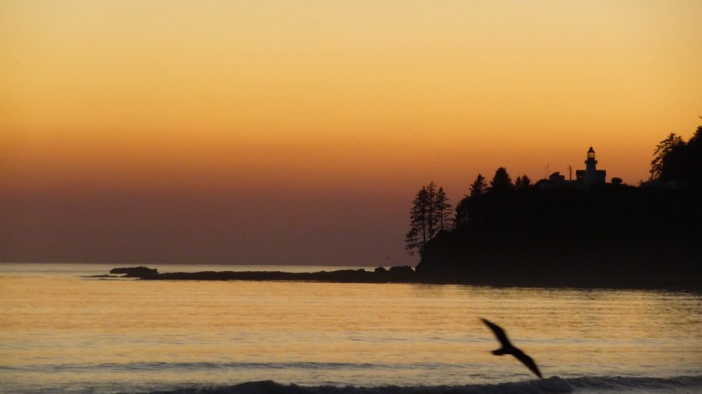 Carmanah Lighthouse from a distance, West Coast Trail