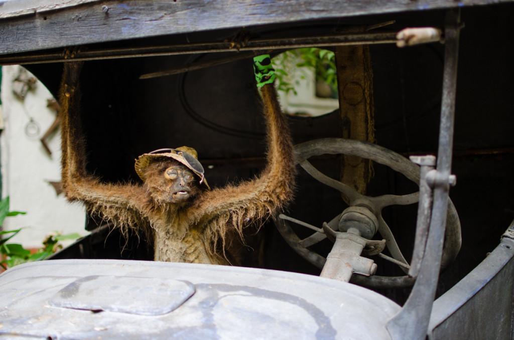Embalmed monkey at Hotel Yeneka, La Paz