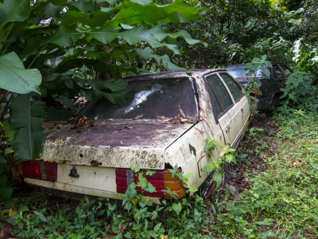 Where cars go to die in Dominica, on the side of the road.