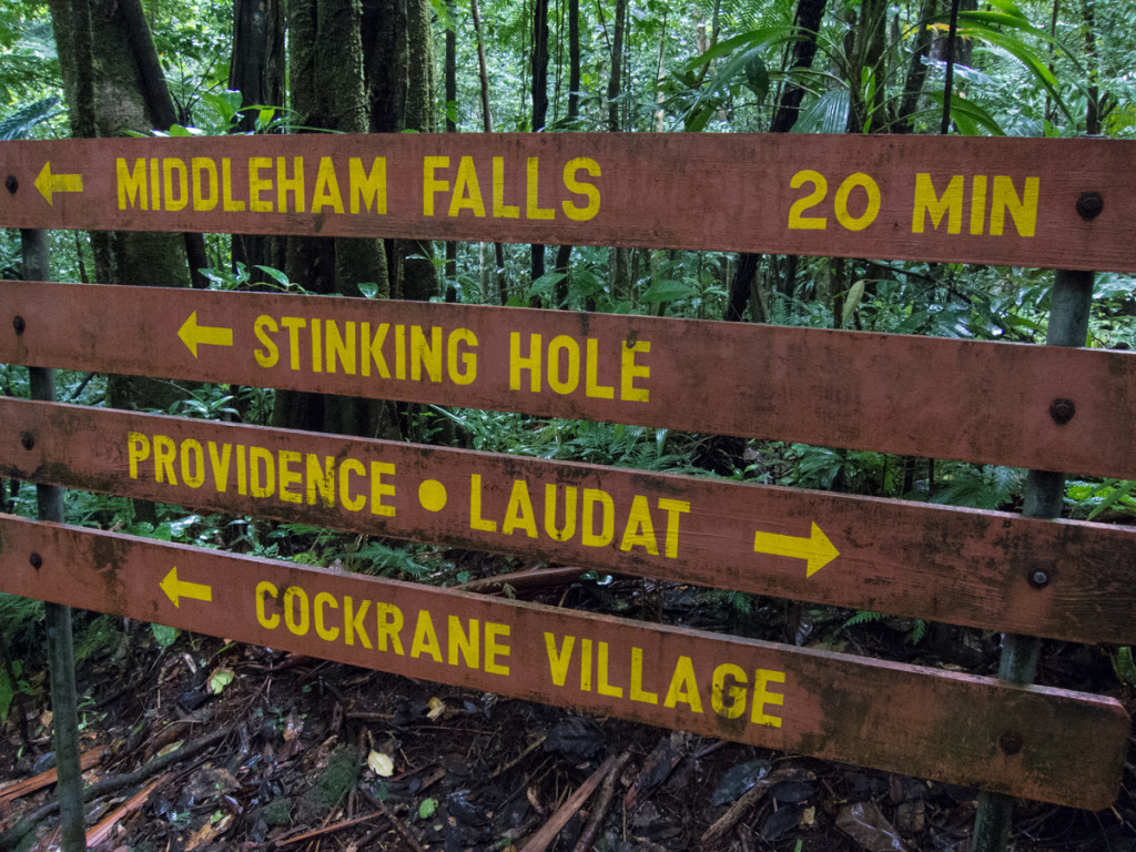 Middleham Falls trail, Dominica