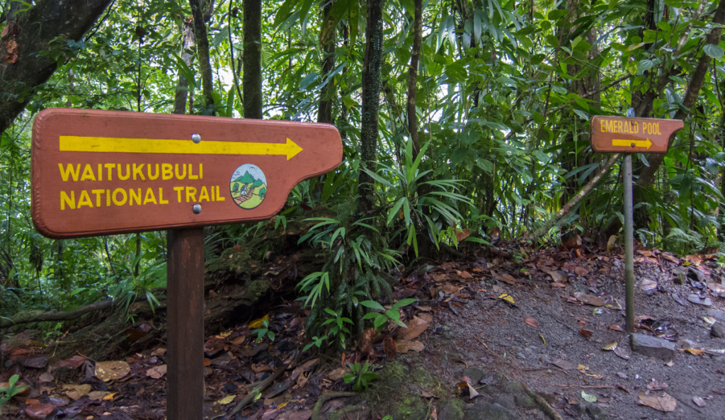Trail to Emerald Pool, Dominica