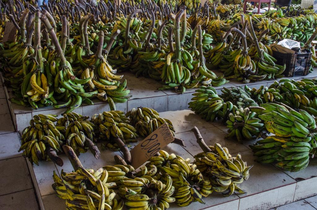 Banana Market, Manaus