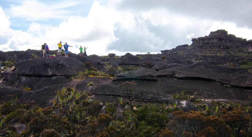 The top of Mount Roraima