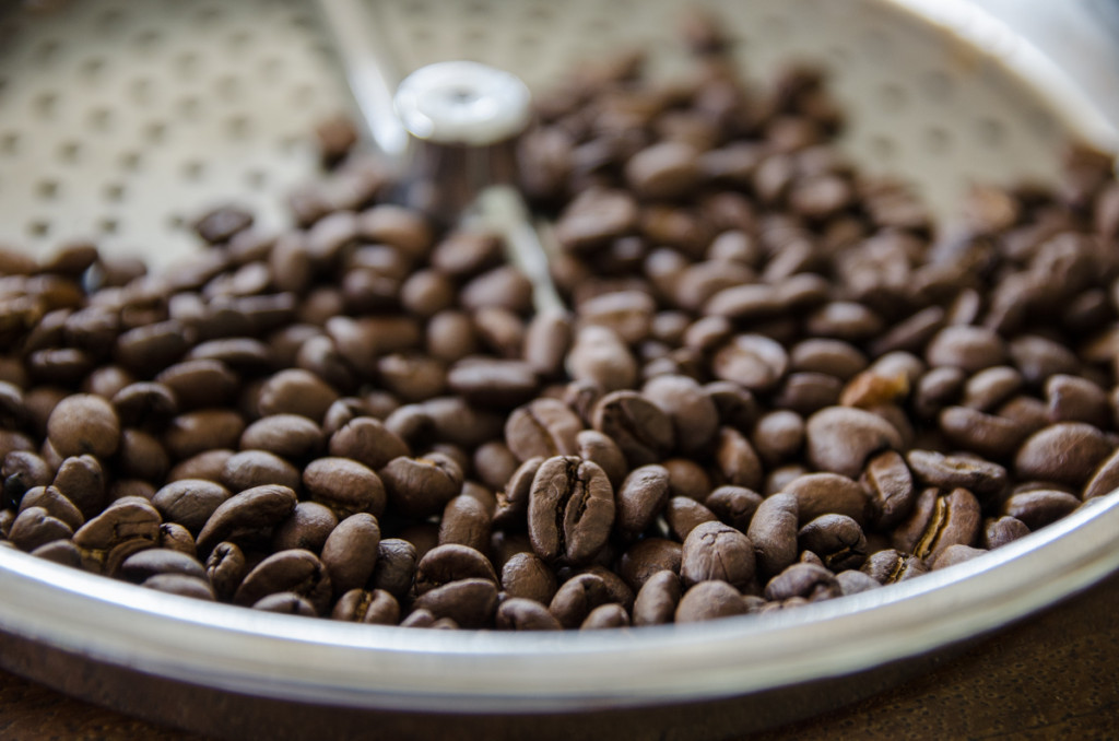 Coffee beans, Hacienda Venezia, Manizales