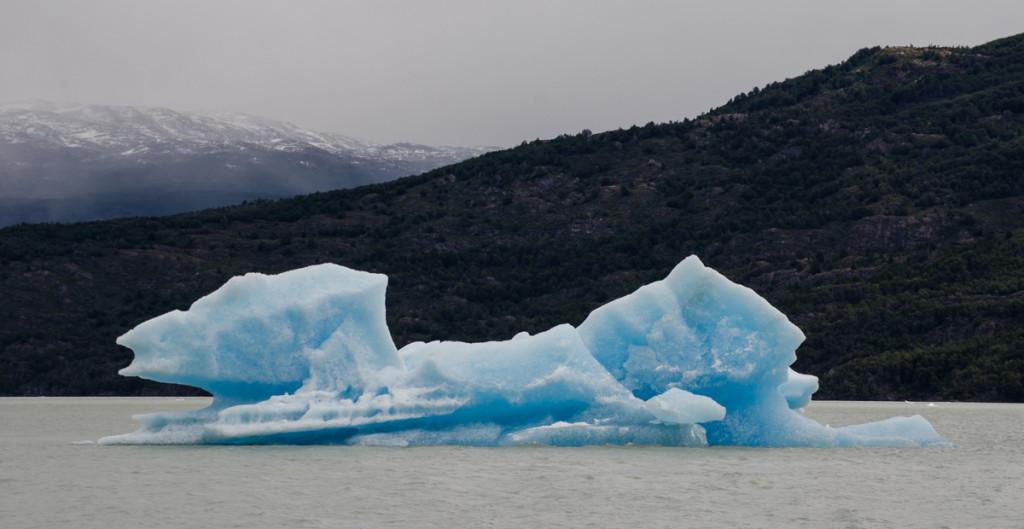 Icebergs from Glaciar Grey, Parque Nacional Torres del Paine