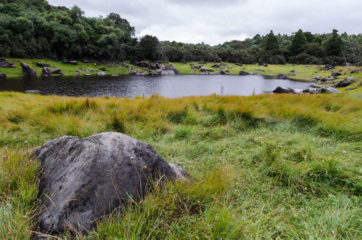 Lake Waikaremoana Great Walk Day 1: Onepoto to Panekire Hut