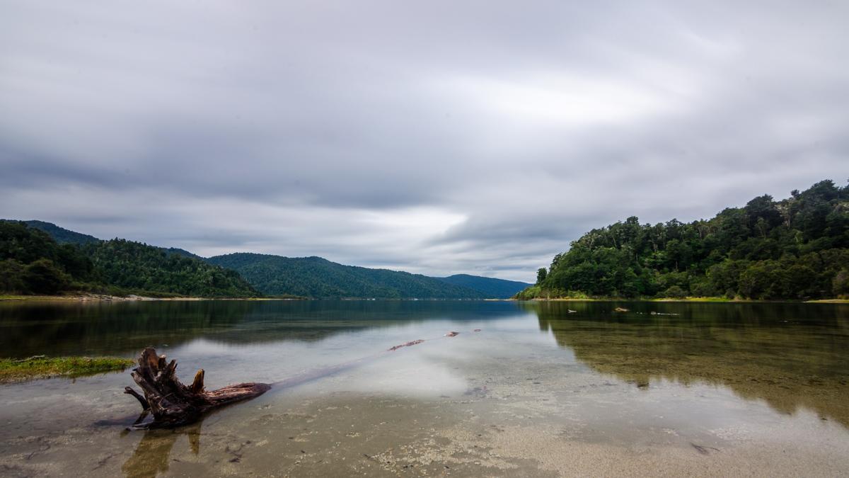 Lake Waikaremoana, near Waiopaoa Hut