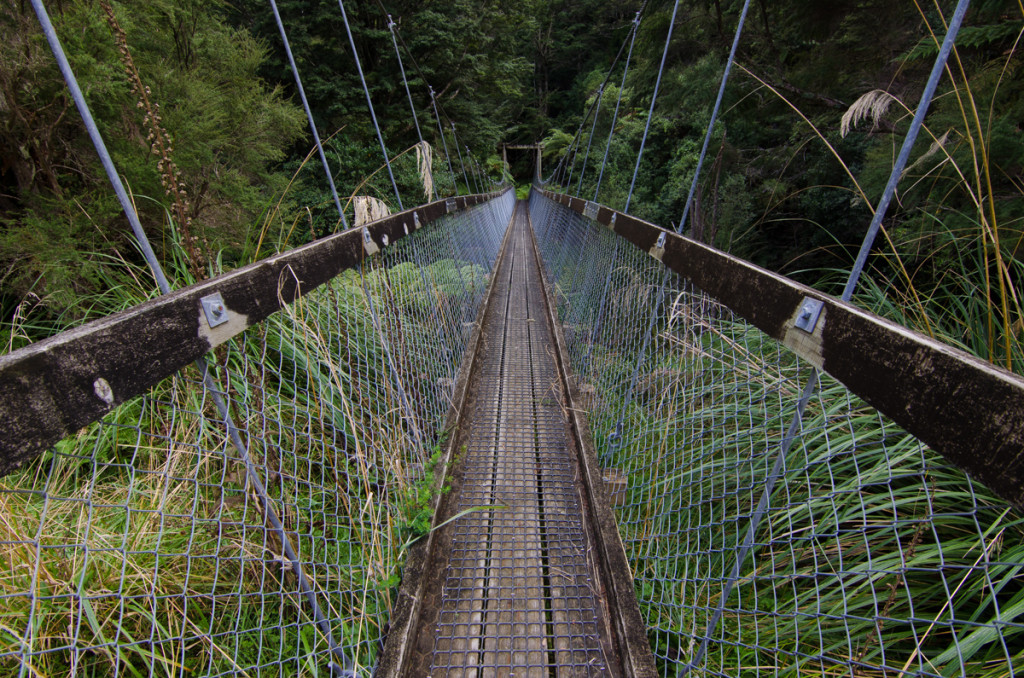 Suspension bridge, Lake Waikaremoana Great Walk