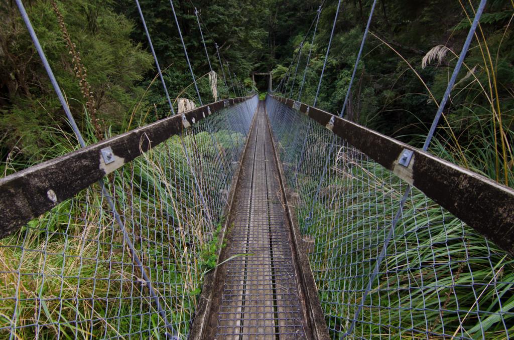 Suspension bridge, Lake Waikaremoana Great Walk