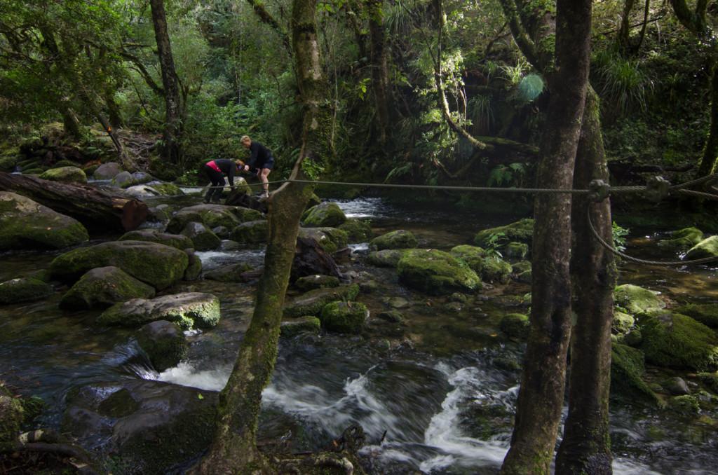 Crossing a river to Korakora Falls, Lake Waikaremoana Great Walk