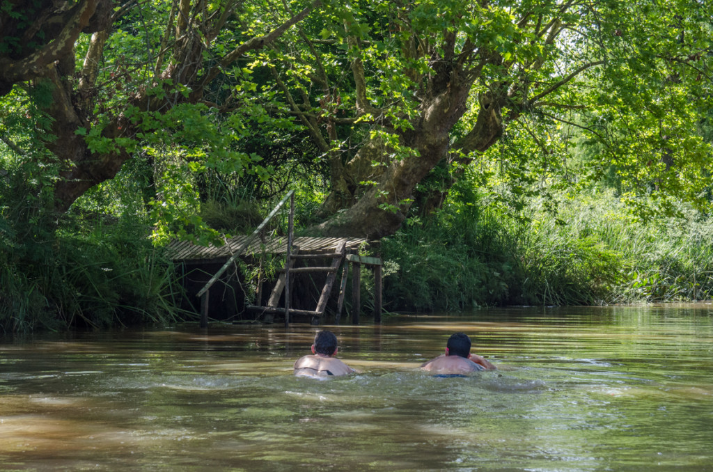 Swimming in the Tigre delta