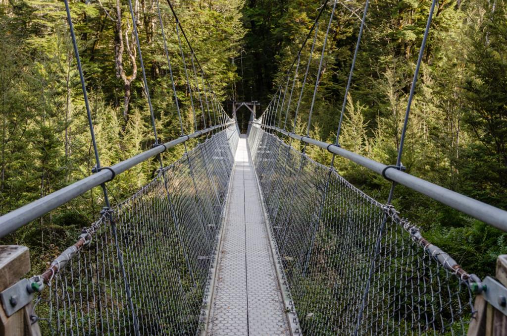 Bridge on Routeburn Track