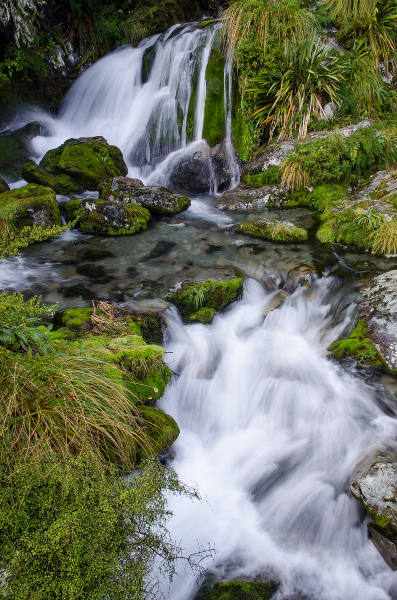Water stream, Routeburn Track