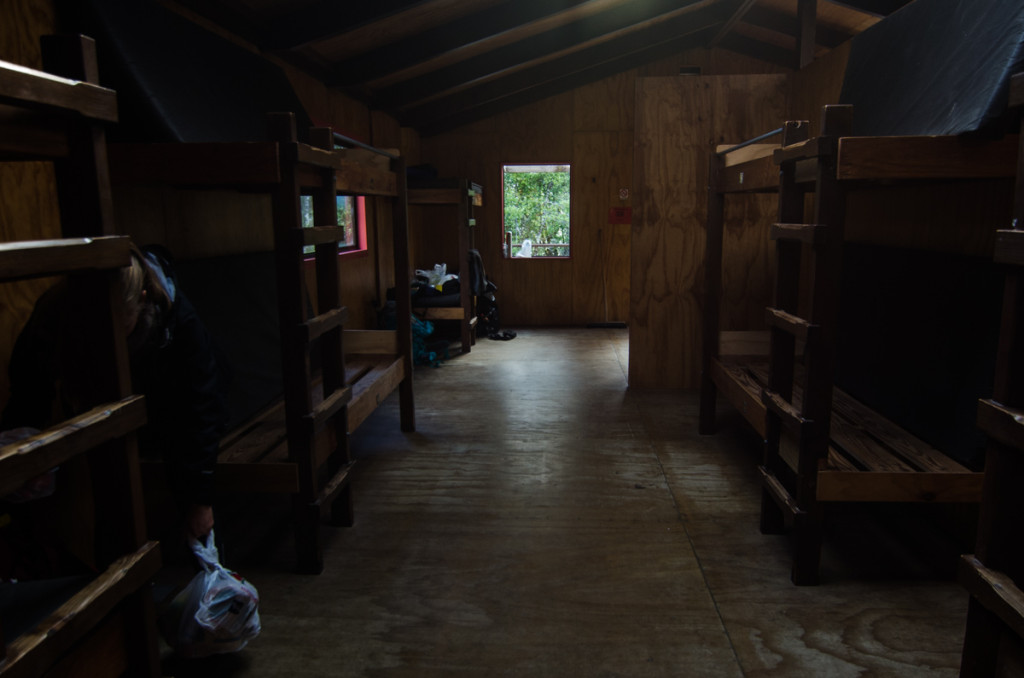 Bunk beds in Clinton Hut, Milford Track