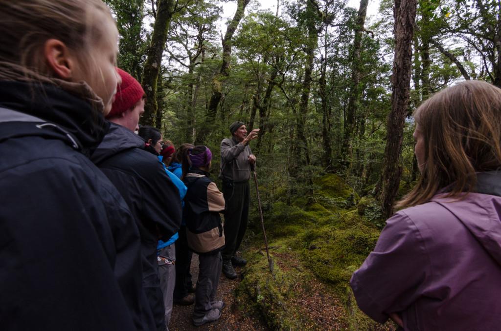 Nature walk led by Ranger Ross, Milford Track