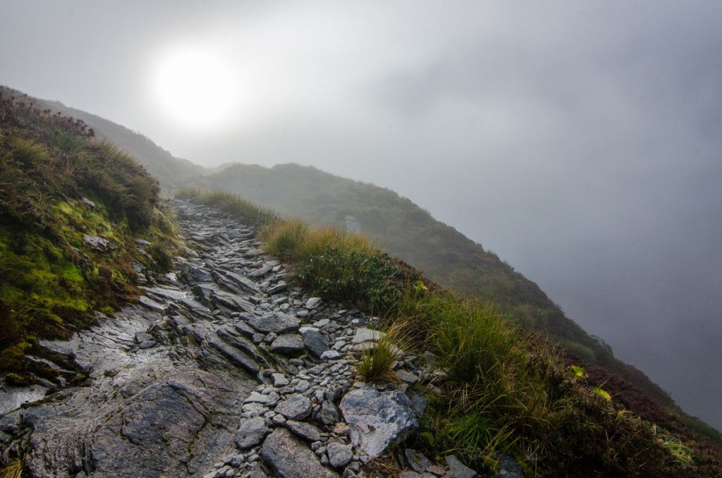 Going up to Mackinnon Pass, Milford Track