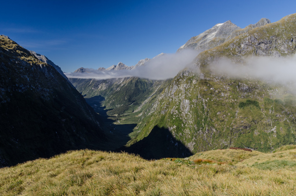 Views from Mackinnon Pass, Milford Track