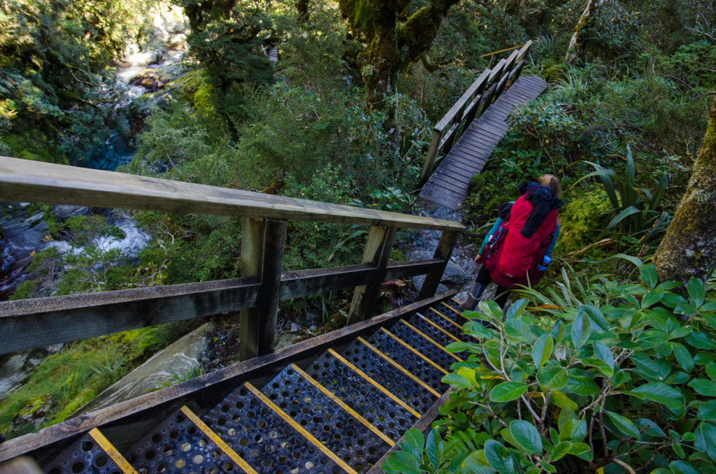 Wooden stairs, Milford Track