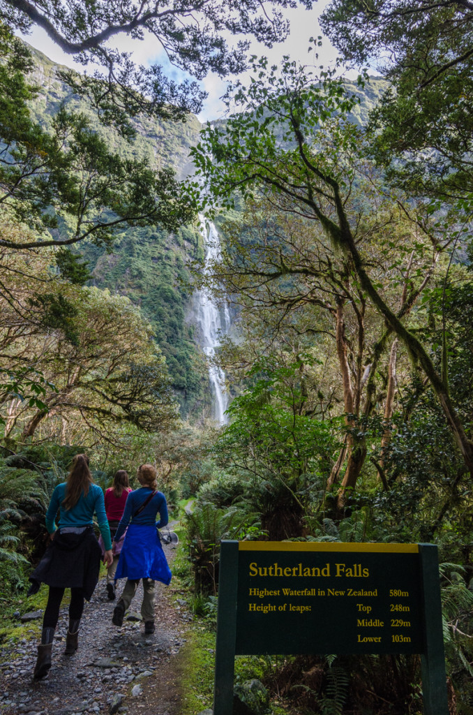 Sutherland Falls, Milford Track