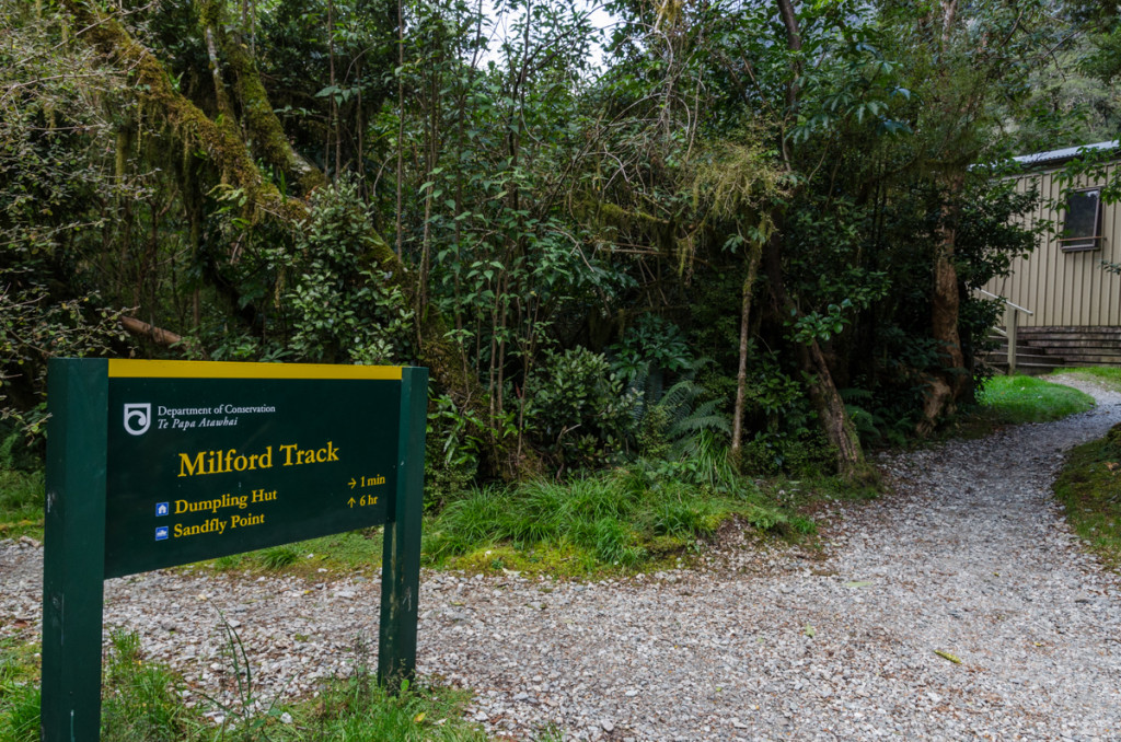 Arriving at Dumpling Hut, Milford Track