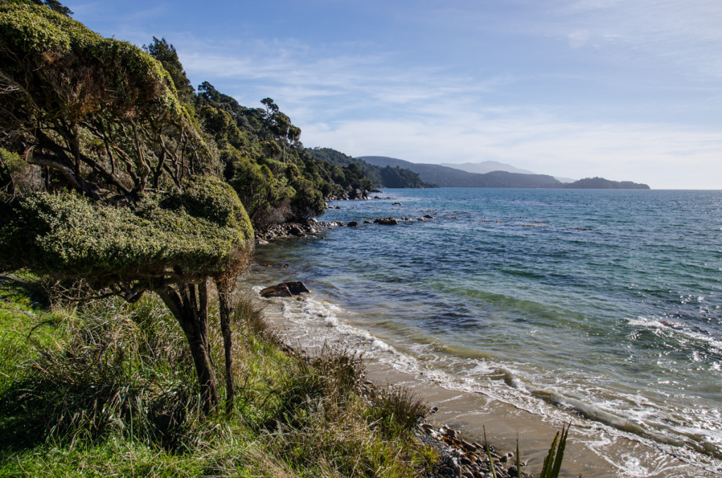 Lee Bay, the beginning of the Rakiura Track
