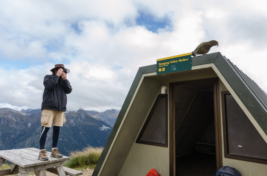 Oliver taking a photo of a Kia, Kepler Track