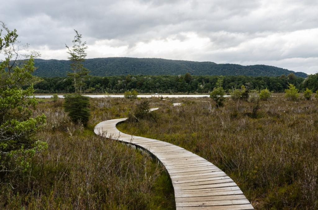 Wetland, Kepler Track