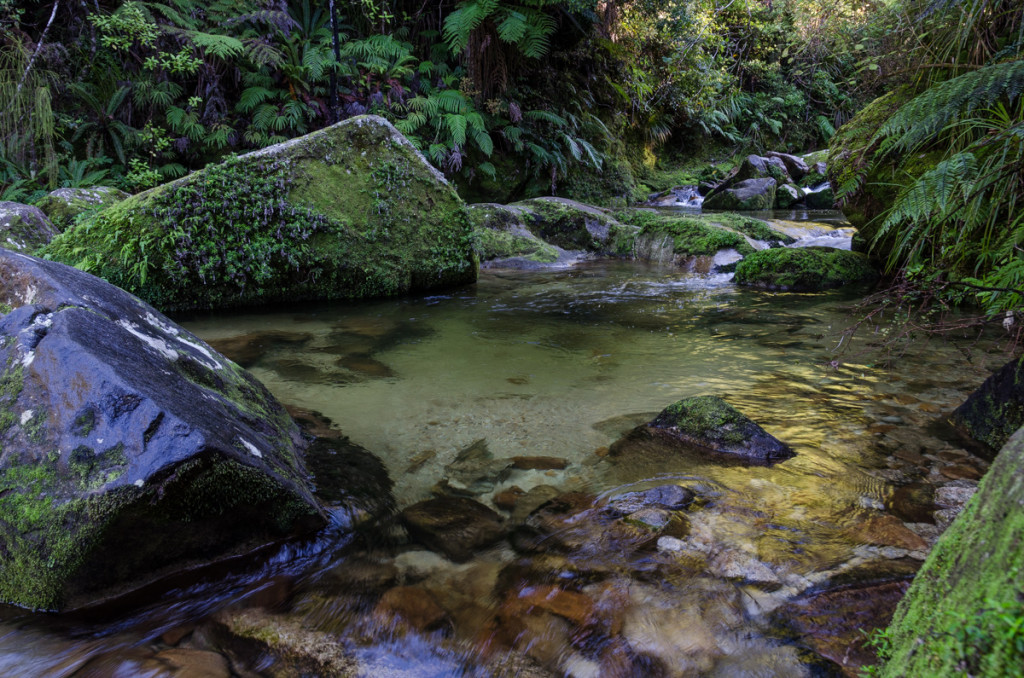 River by Cleopatras Pool , Abel Tasman Coast Track