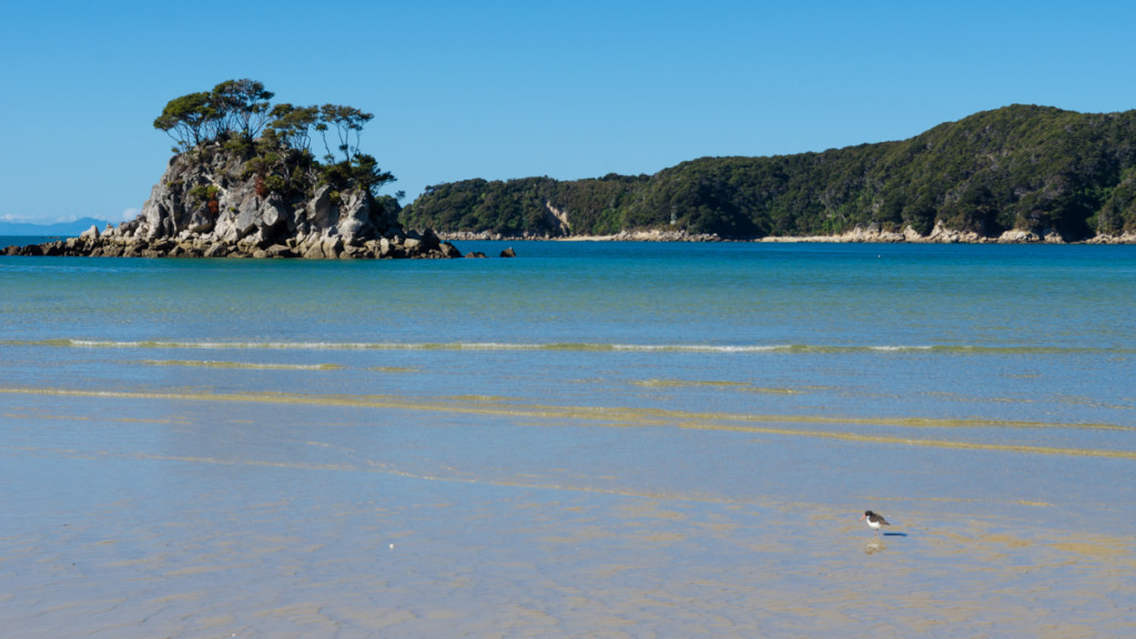 Torrent Bay, Abel Tasman Coast Track