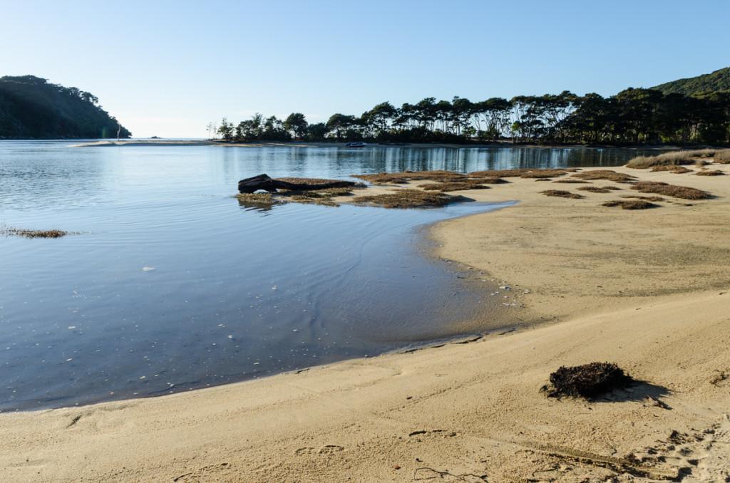 Rising tide by Bark Bay Hut, Abel Tasman Coast Track