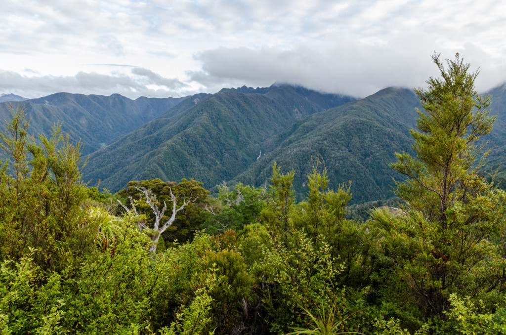 View from Flanagans Corner, Heaphy Track