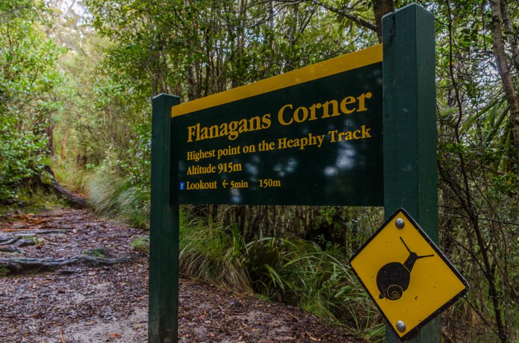 Flanagans Corner, Heaphy Track