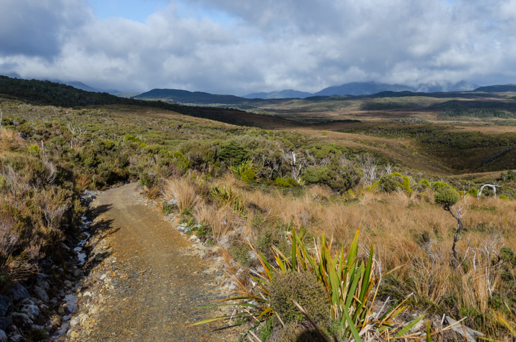 Gouland Downs, Heaphy Track