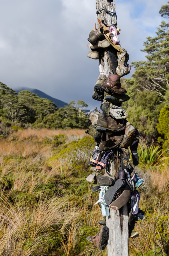 Heaphy Boot Pole, Heaphy Track