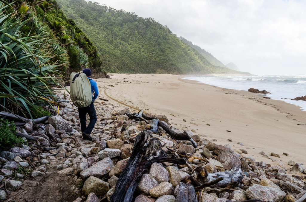 Crayfish Point, Heaphy Track