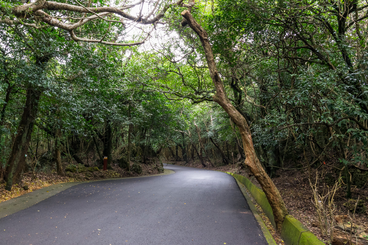 Kenting Forest Recreation Area