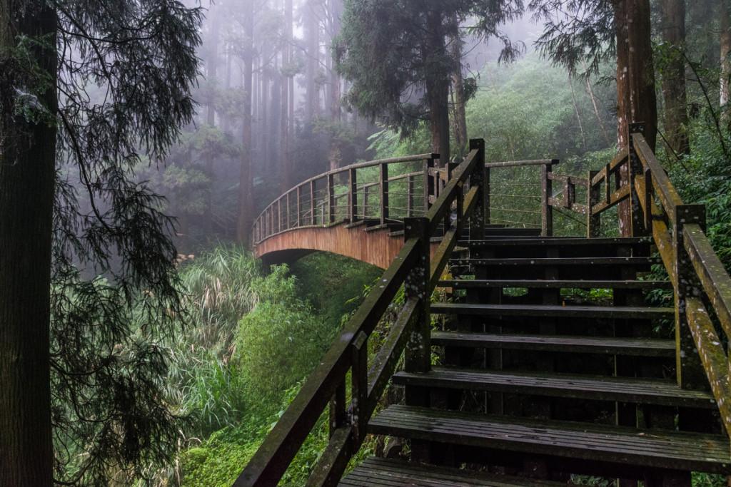 Fenqihu Trail, Alishan National Scenic Area
