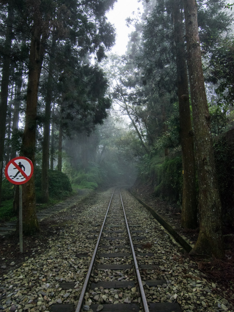 Fenqihu Trail, Alishan National Scenic Area