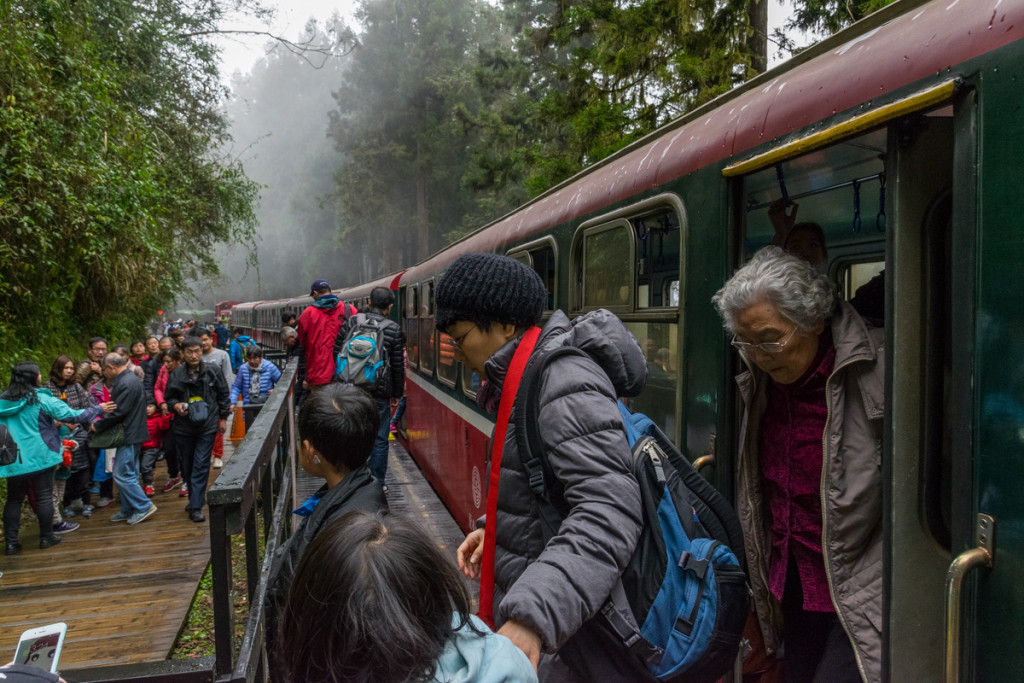 Sacred Tree Station, Alishan Forest Railway