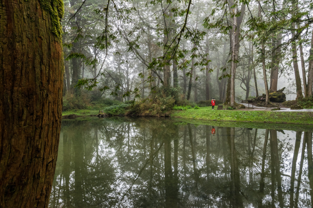 The Sister Pond, Alishan National Forest Recreation Area