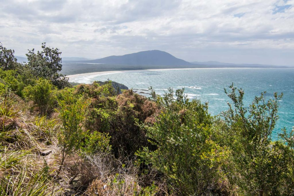 Diamond Head Loop Walk at Crowdy Bay National Park